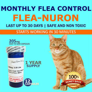 1-Year-Supply-MONTHLY-Flea-Control-for-CATS-2-20-Lbs-205-Mg-12-Capsules-PB