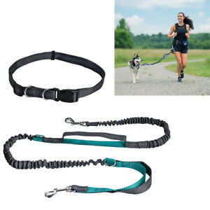 Reflechissant-mains-libres-chien-plomb-Running-Jogging-Ceinture-Formation-Bungee-laisse