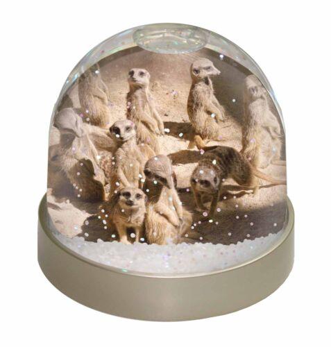 AMK-1GL Meerkats Photo Snow Globe Waterball Stocking Filler Gift
