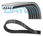 Dayco 5PK1145 V-Ribbed Belts
