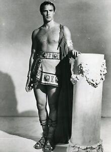 """Résultat de recherche d'images pour """"Marlon Brando dans Jules César photos"""""""