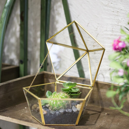 Clear Glass Geometric Terrarium Succulent Planter Closed Plant Containe Moss Box