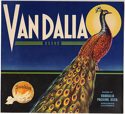 Plano Vandalia Peacock Bird Orange Citrus Fruit Crate Label Art Print