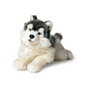 weicher-35cm-Husky-liegend-Stofftier-Plueschtier-Kuscheltier-Pluesch-Hund-Dog-grau