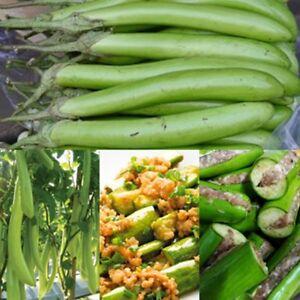 The incorrect asian grow seed veg