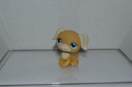 Littlest Pet Shop~#788~Golden Retriever~Dog~Brown Yellow~Blue Teardrop Eyes