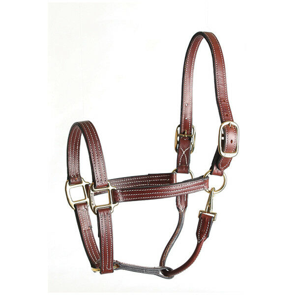 Leder Stable Stable Leder Halter - Havana - Different Größes c9c06e