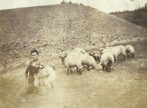 West-Virginia-Farmer-Holding-Sheep-Appalachia-Kentucky-Vintage-Photo
