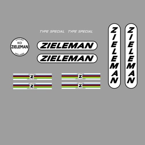 n.30 Stickers Zieleman Type Special Bicycle Decals Transfers
