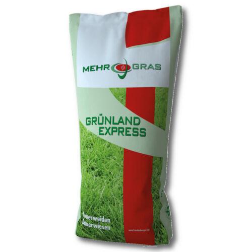 Dauerweide predeterminada G II con trébol RHt 10 kg Sauce neuansaat sala recomendación