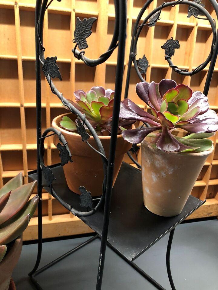 Blomsteropsats plantestativ, Retro