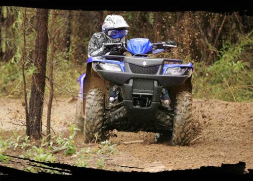 Set of 4 Blue Skull Suzuki Shock Covers King Quad 300 400 450 500 700 750 NEW
