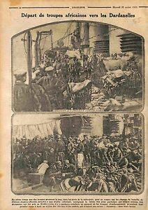 Chevaux-Mulets-Troupes-Tirailleurs-Senegalais-Bataille-des-Dardanelles-WWI-1915