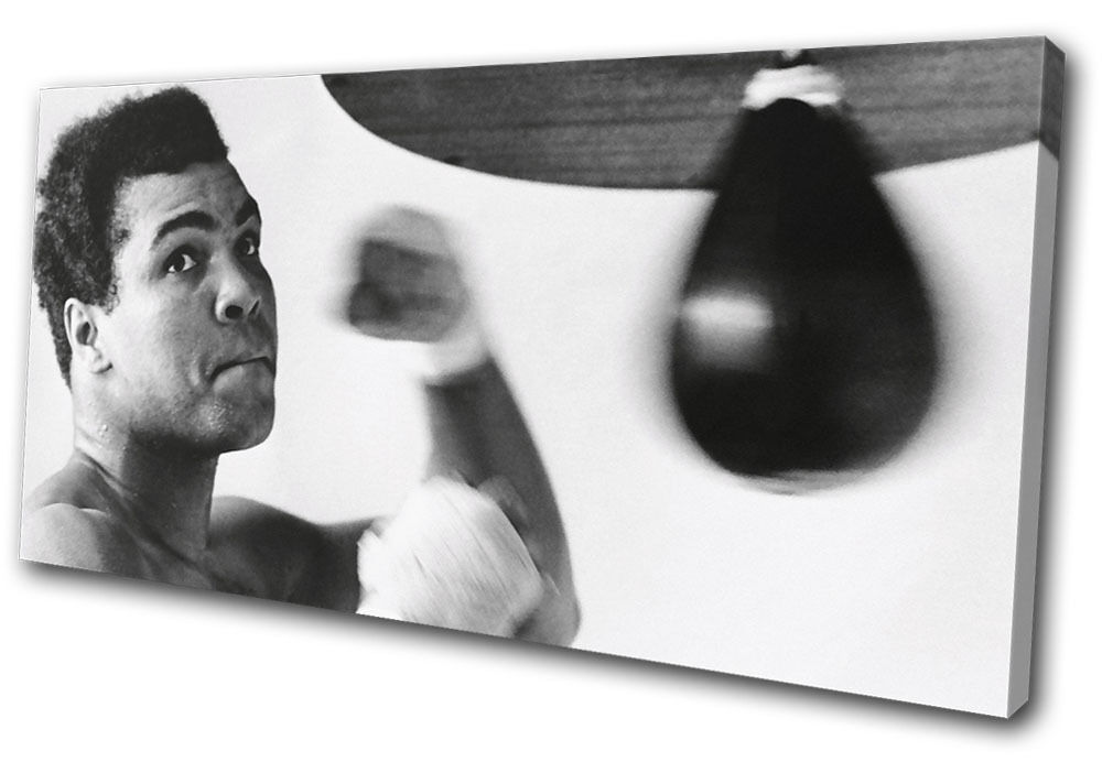 Muhammad Ali Boxing Training Sports SINGLE TOILE murale ART Photo Print