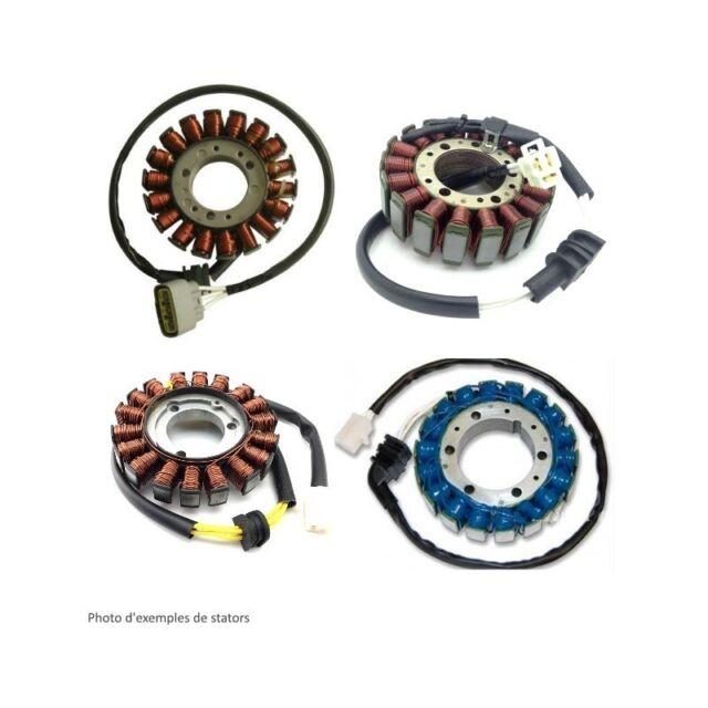 Stator TRIUMPH Sprint RS 955 00-03 (016511) - ElectroSport
