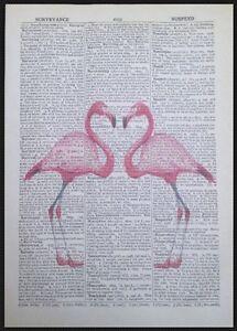 Vintage-Rosa-Flamingo-Herz-Liebe-Woerterbuch-Druck-Seite-Wandkunst-Bild-Vogel