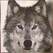 2 single paper napkins decoupage scrapbooking collection Serwetki Animals Wolf