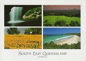 LARGE-sized-SOUTH-EAST-QLD-POSTCARD-4-VIEWS-NATURAL-ARCH-SUNFLOWERS-NOOSA