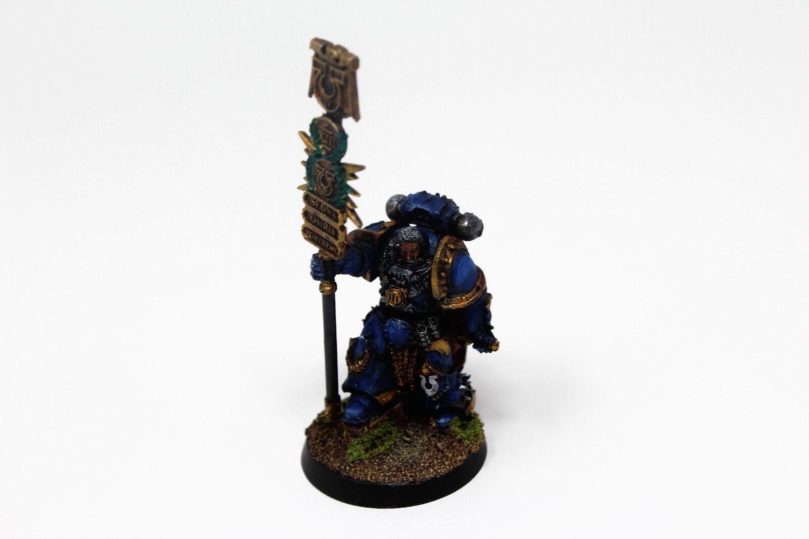Warhammer Space Marine Ultramarines FW Herald Well Painted