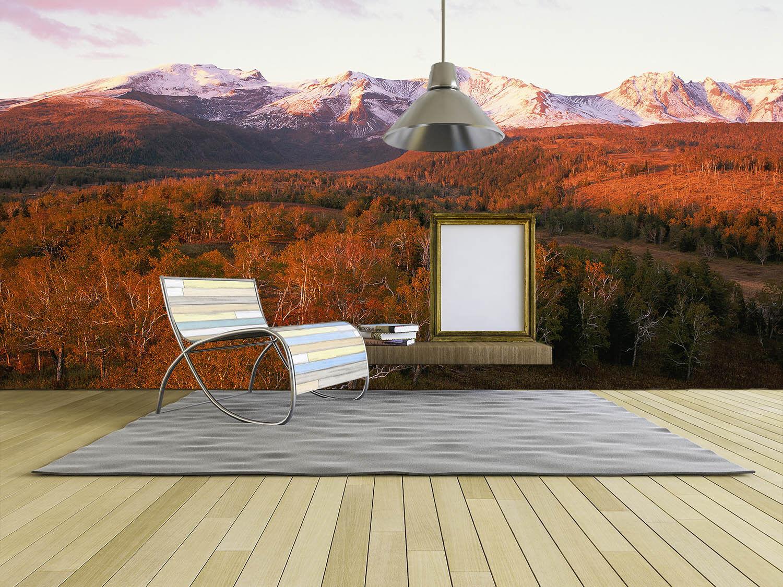 3D Autumn Jungle Hills 452  Wall Paper Wall Print Decal Wall Deco Indoor Mural