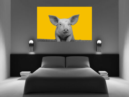 Mustard Yellow Grey Pig Abstract Canvas Wall Art Picture Print