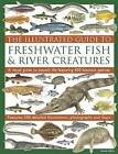 The Illustrated Guide to Freshwater Fish & River Creatures: A Visual Guide to Aquatic Life Featuring 450 Fabulous Species: Features 500 Detailed Illustrations, Photographs and Maps by Daniel Gilpin (Paperback, 2011)