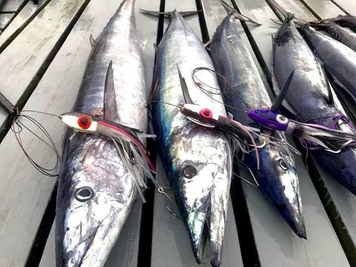 BahamaLure Medium Tackle Wahoo Pack - Lures Only