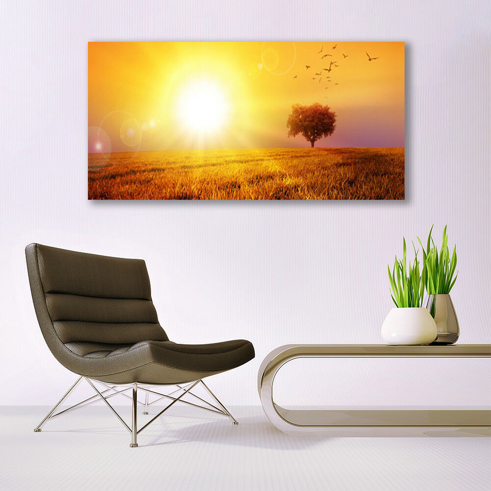 Glass print print print Wall art 140x70 Image Picture Sun Meadow Landscape 25aced