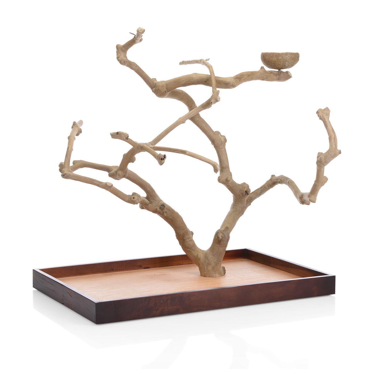 ultimi stili Java Java Java Tree Tavolo libero sede di caffè in legno per grandi pappagalli & PAPPAGALLI-LARGE  negozio all'ingrosso