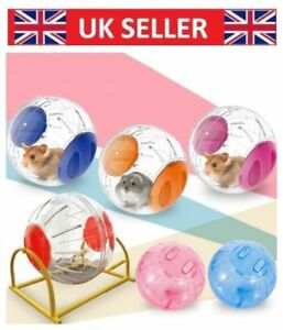 UK-Exercise-Large-Hamster-Ball-Gerbil-Rat-Pet-Activity-Play-Toy-12cm-sj6