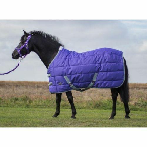 Mark  Todd Pony Mediumweight Stable Rug 250g Fill 210D Purple Grey 4'3  - 5'3''  comfortably