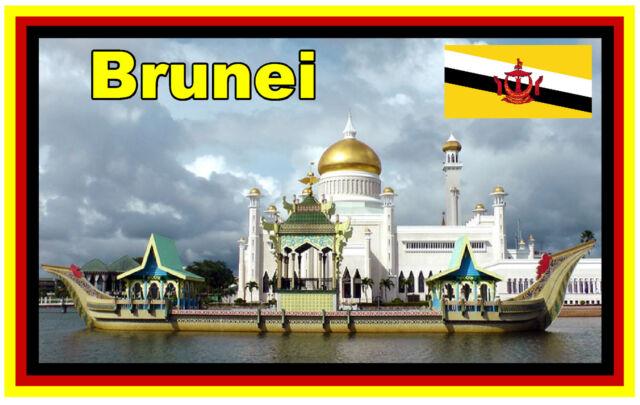 BRUNEI - SOUVENIR NOVELTY FRIDGE MAGNET - BRAND NEW - GIFT