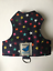 Butterfly-Cat-Jackets-Walking-Harness-Jacket-Stars-and-Polka-Dot-Patterns