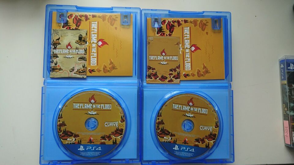 Theflame in the flood, PS4