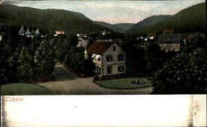 Tabarz-Thueringer-Wald-Thueringen-Litho-AK-1911-datiert-Teilansicht-mit-Wohnhaus