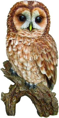 Vivid Arts PLP-107 Plant Pals Tawny Owl Home or Garden Decoration