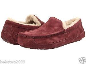 Mens Shoes UGG Ascot Cordovan/Cordovan Suede
