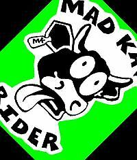 Mad Kaw Rider decal sticker BLACK WHITE cow ninja r 636 600 750 1000 racing 300