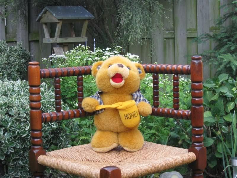 Vintage Simba Super Toys Germany Honey Bear
