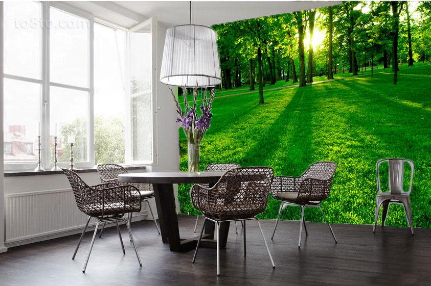 3D Das frische green wiesen Fototapeten Wandbild Fototapete BildTapete Familie DE