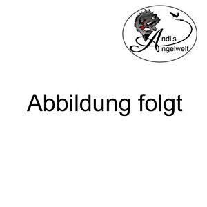 Kinderangel Anfängerangel Combo Sänger Newcomer Spin 210 cm - 15-40 mit Rolle
