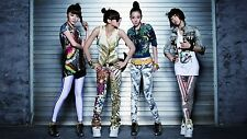 "2NE1 KPOP Posters Korean Girl Group Silk Poster Prints 20x12"" 2NE12"