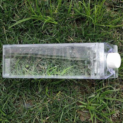 Leakproof Creative Transparent Milk Fruit Water Bottle Drinkware Outdoor Climb