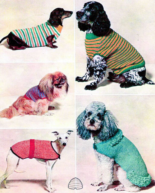 Knitting Pattern For A Collection Of 5 Winter Warm Dog Coats