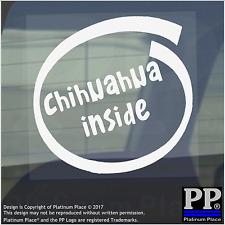 1 x Chihuahua all'interno-Finestra, Auto, Furgone, STICKER, SEGNO, Adesivo, Cane, Pet, su, Board, Cucciolo