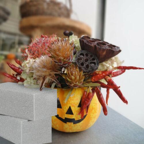 Steckschwamm Steckmasse Trockensteckschaum 12 x Steckschaum für Trockenblumen