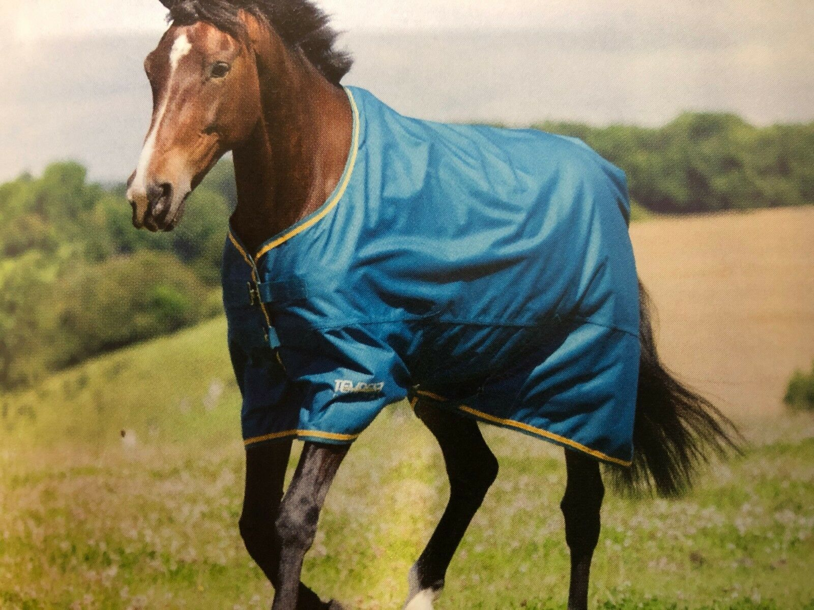 SHIRES TEMPEST LITE TURNOUT RUG 9330 FREE POSTAGE