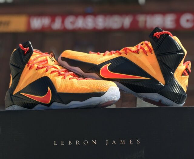 timeless design 1ff9d 7b65d NIKE LEBRON 12 XII WITNESS CAVALIERS PE QS TEAM ISSUED WHAT THE DATA SIZE 10