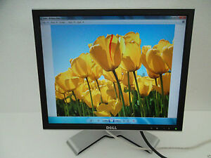 "Dell 1907FP UltraSharp 19"" LCD Monitor w/4-Port USB Hub VGA DVI 8ms DC323 CJ319"