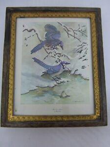 Dollhouse Miniature Vintage Look Framed Bird Illustration